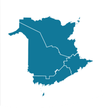 School sectors in N.B.